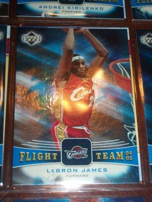 Lebron James 04-05 Upper Deck basketball card- Flight Team insert
