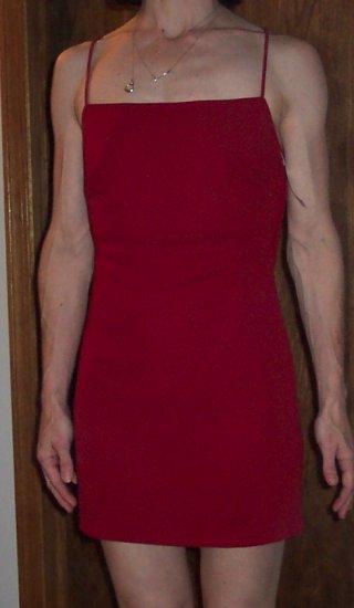 Sexy Sensual ABS by ALLEN SCHWARTZ Formal Burgundy Mini Dress Size S 141-250hdress