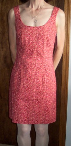 EXPRESS World Brand Retro Mod Romantic Dress Size 3/4  101-5hdress location97