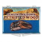 (1) Genuine Arizona Petrified Wood *Includes Clear Acrylic Display Case*