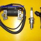 LIFAN 168F LF168F 168F-2 LF168F-2 5.5HP 6.5HP IGNITION COIL, SPARK PLUG & CAP