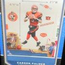 Carson Palmer Cincinnati Bengals Real Big Fathead #12-20012