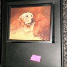 Decorative 360 Night Light In Gift Box : Golden Retriever  #039