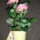 """Forever Beautiful 17.5"""" Satin Artificial Rose In Resin Pot Assorted Colors #3735"""