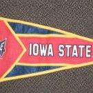 N.C.E. / Decorative Concepts Iowa State Collegiate Pennant #51545