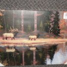 """Wonderland Graphics Inc Elk Fall Reflections Canvas Picture 18"""" X 12"""" #60100IMWC"""