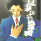 MY28 Phoenix Wright Doujinshi by Makeinu