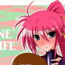 EM40	R18 ADULT Doujinshi	Magical Girl Lyrical Nanoha	by Syamisen Koubou	Hayate, Signum centric