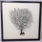 Seafan, Coral Framed Art