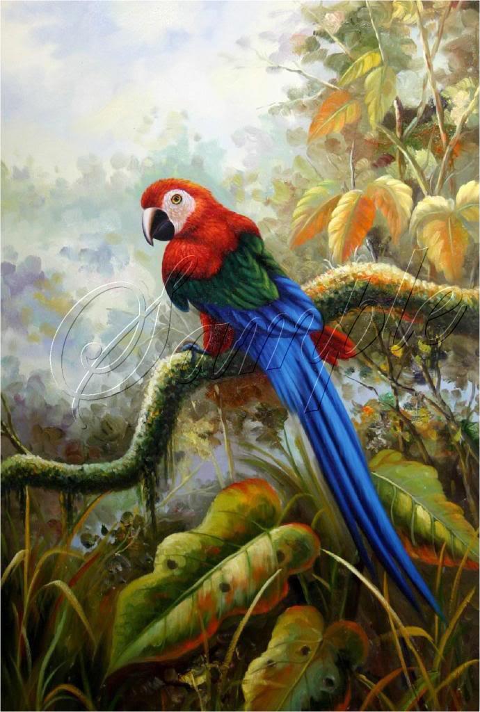 VINTAGE PARROTS MACCAW BIRDS AMAZON CANVAS ART - LARGE
