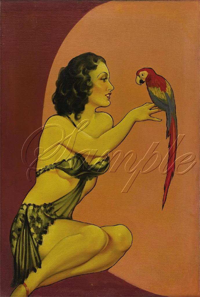 VINTAGE RISQUE PIN-UP GIRL PARROT CANVAS ART PRINT