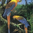 VINTAGE PARROTS CUBAN MACCAW BIRDS CANVAS ART - LARGE