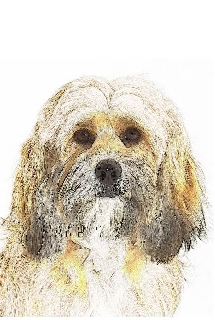 BENJI TERRIER DOG CANINE DIGITAL CANVAS ART PRINT LARGE