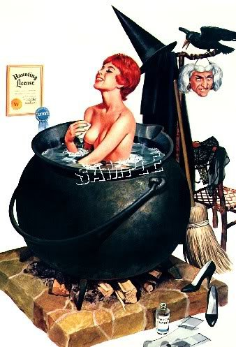 WITCH HALLOWEEN PIN-UP GIRL WICCA CANVAS ART PRINT- BIG