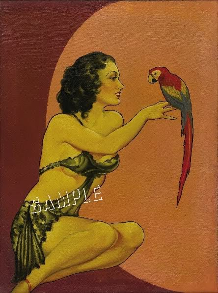 VINTAGE RISQUE PIN-UP GIRL PARROT CANVAS   PRINT LARGE