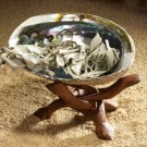 Abalone Shell & Stand