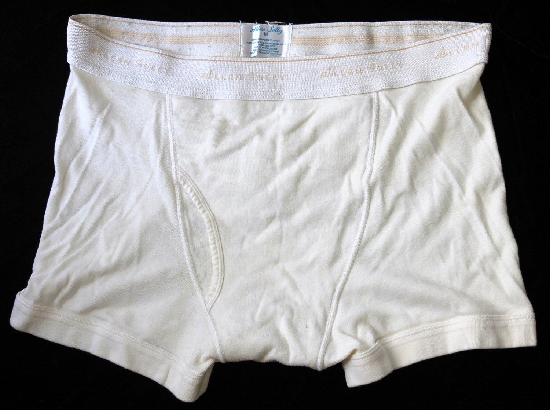 Allen Solly  Men's 1 pr White Underwear Boxer Briefs M