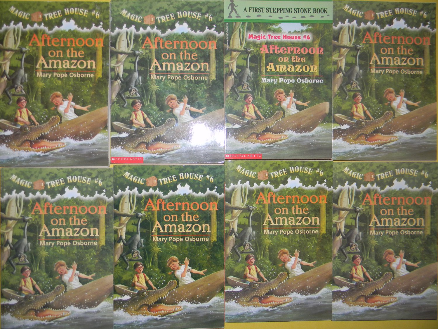LOT MAGIC TREE HOUSE BOOKS RESEARCH GUIDE 10 TOTAL BOOKS NEW