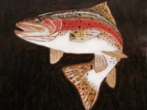 Collector's Leather Painting Of Trophy Rainbow Trout Item 158