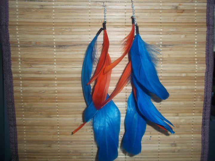 Blue/ orange feathers