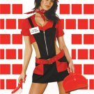 Chimney Sweep - 9665