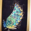 vintage black velvet peacock