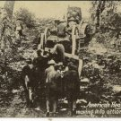 WORLD WAR l Post Card, American Heavy Artillery-France