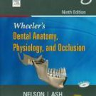 Wheeler's Dental Anatomy Physiology And Occlusion by NELSON ASH 9788131225042 9TH EDITION