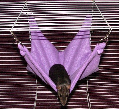 Hammock A- 15 inch Purple Fleece Hammock