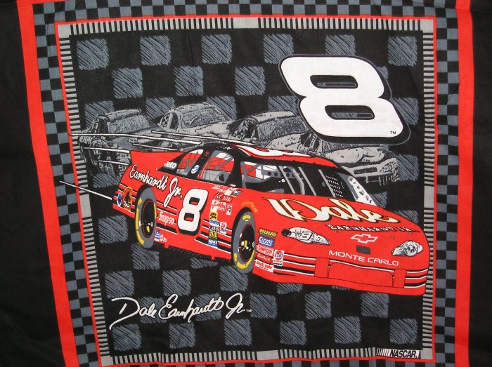 Dale Earnhardt #8 JR Nascar Fabric 2002 Fat Quarter Pillow top