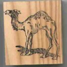 Camel Rubber Stamp   medium made in America
