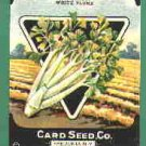 1920's Card seed Company seed packet Celery Henderson White Plume