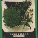 1920's Card seed Company seed packet Sweet Marjoram
