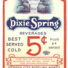 Dixie Spring  vintage soda label 16 oz MINT union label