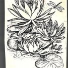 Waterlilys with dragonfly water lilys rubber stamp pond insect ecosystem