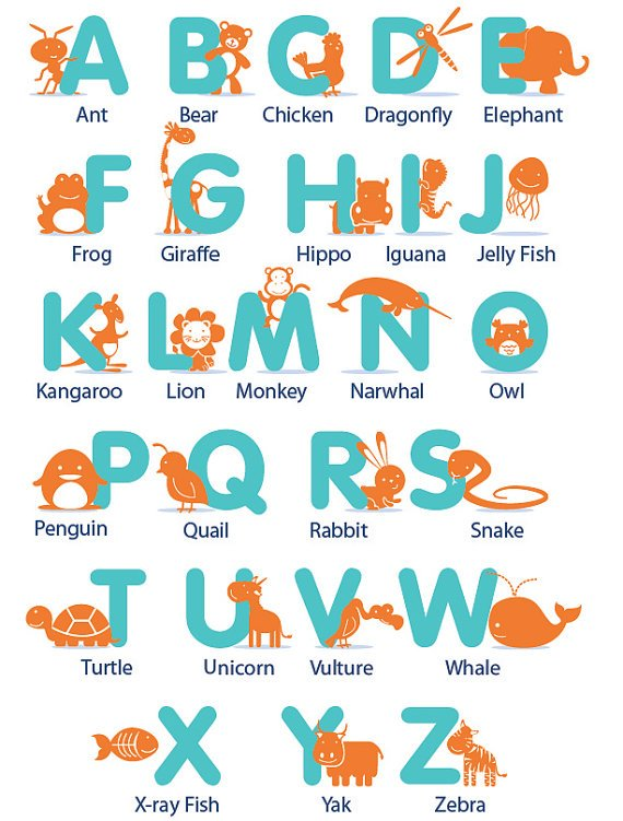 Kids Alphabet with animals and there name in any colors A-Z removable nursery vinyl wall decal