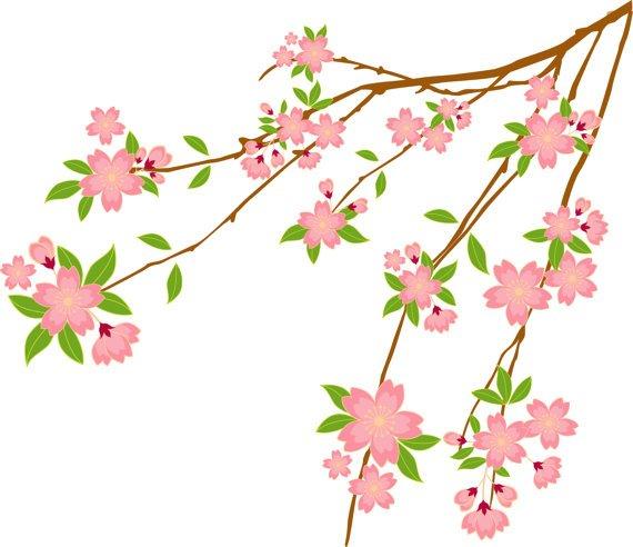 cherry blossom tree branch vinyl wall decal