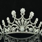 Tiptop Rhinestone Crystal Flower Bud Tiaras Crown Headband Bridal Princess 8357R