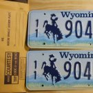 Wyoming license plate pair 11- 904 BF Park County New