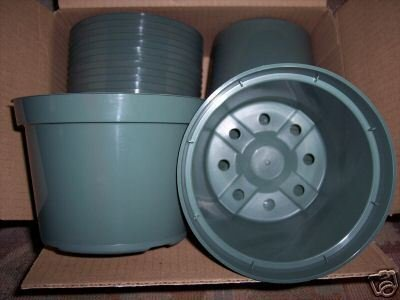"6"" Azalea green plastic pot, greenhouse nursery 120 lot"