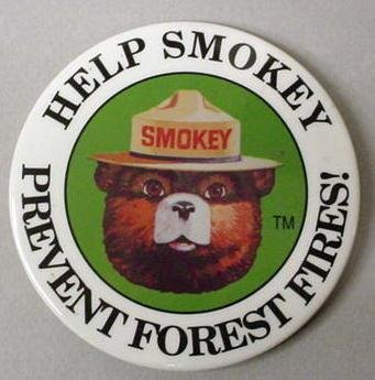 SMOKEY BEAR PINBACK + SMOKEY BEAR COMIC