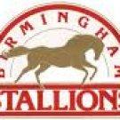 Birmingham Stallions Mug Cup 1980s