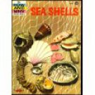 The How & Why Wonder Book of Sea Shells 1961