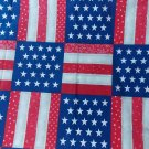 DAISY KINGDOM 4581 STARS & STRIPES FOREVER QUILT OOP