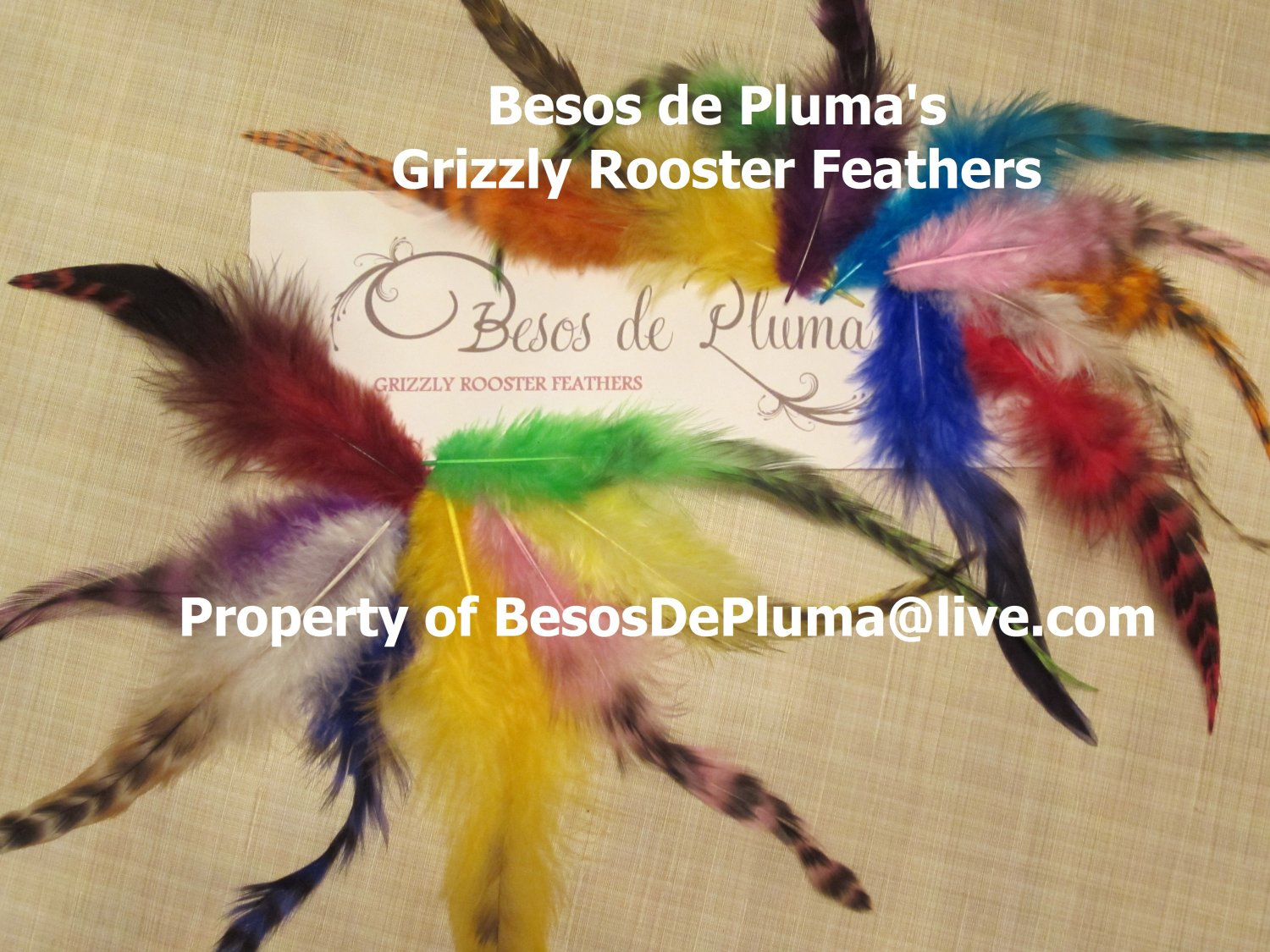 Grizzly Rooster FEATHERS HAIR EXTENSION KIT-Tools+Link Beads+Instructions