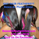 Do-It-Yourself FEATHERS HAIR EXTENSION KIT-Tools+Link Beads+Instructions+5 Grizzly Emu Feathers