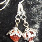 Crystal and silver earrings