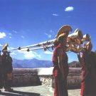 tibet artwork: Buddism temple long horn