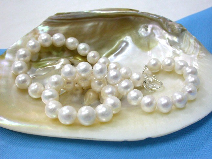 CLASSIC 11MM round AA+ WHITE pearls Necklace silver clasp