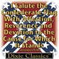I SALUTE THE CONFEDERATE FLAG T-SHIRT SMALL